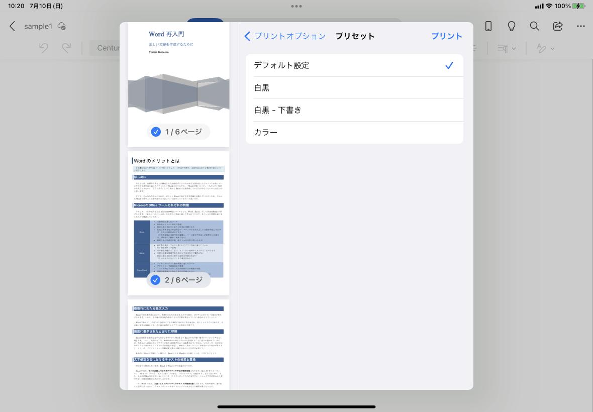 ipad pdf 確認する