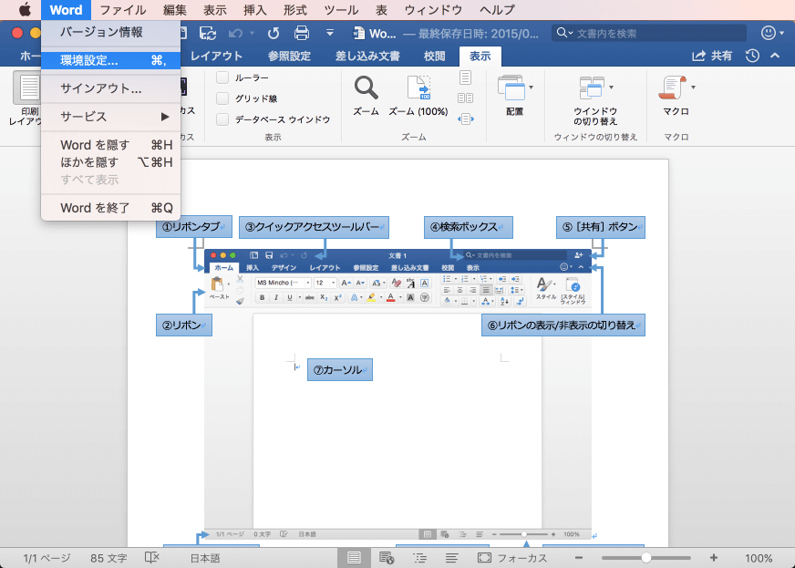 Word 2016 for Mac:画面に表示する項目を選択するには
